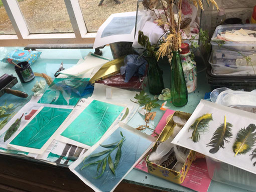 mono prints from nature workbench