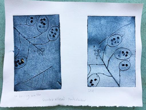 intaglio prints from honesty embossed in foam board
