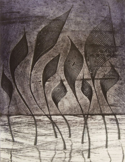 Collagraph print of water plants