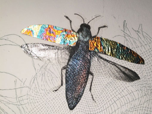 beetle with gilded wings and mica body