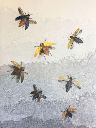 jewel beetles print with mica