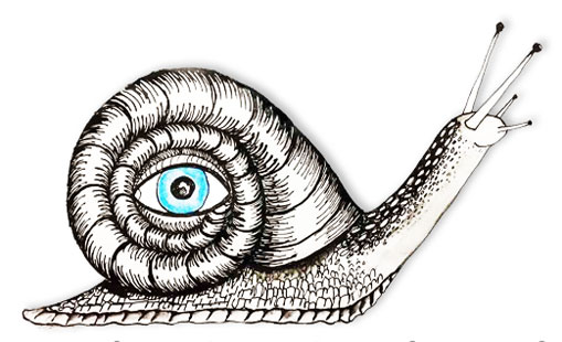 drawing of snail with an eye logo